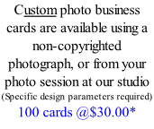 Custom photo business cards are available using a non-copyrighted photograph, or from your photo session at our studio (Specific design parameters required) 100 cards @$30.00*